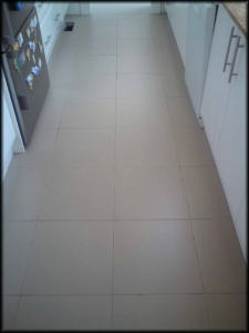 Floor Grout Before Regrouting