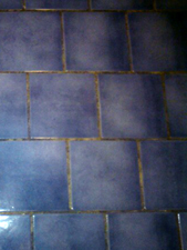 Floor Grout Before ReColouring