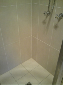 Shower After Regrouting