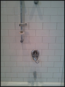 Shower Before Regrouting