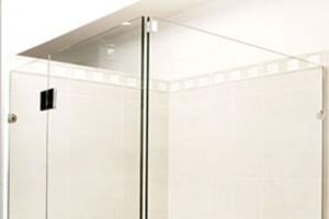 New Shower Screen